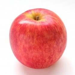 旬な果物&木の実